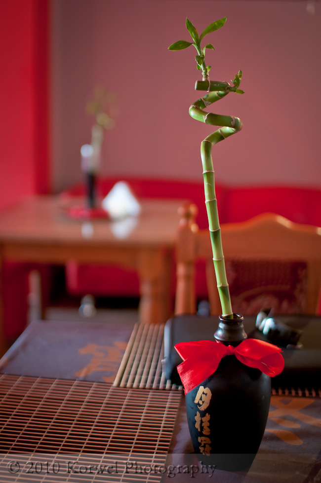 Mamboo in vase, interior of Chineese restaurant, Poland