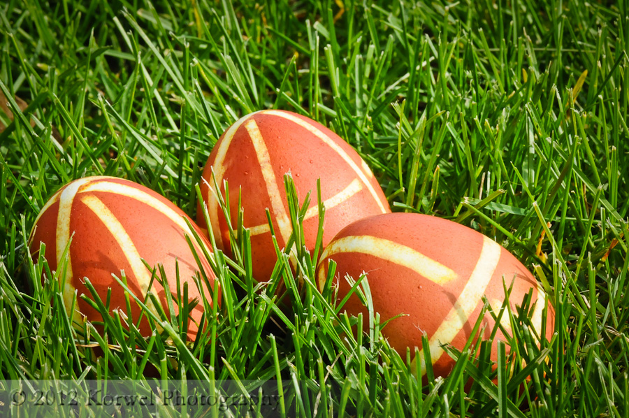 Easter eggs on grass