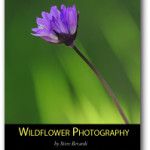"Thursday read – learn ins and outs of flower photography with ""Wildflower photography"" by Steve Berardi"