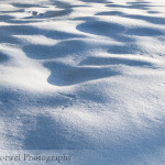 Snow drifts (#FilmFriday)