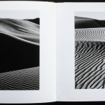 Exploring the Masters- light and shadow by Edward Weston