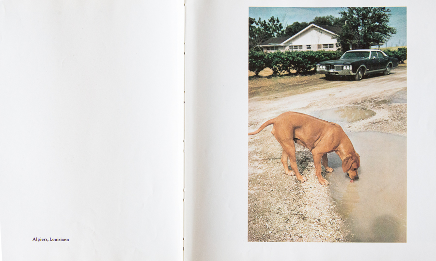 "Algiers, Louisiana from ""William Eggleston's Guide"" by John Szarkowski"