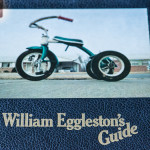 Obscurity and memories by William Eggleston