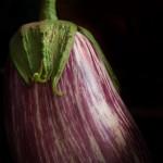 Eggplant (low key)