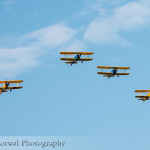 Parade of Stearmans