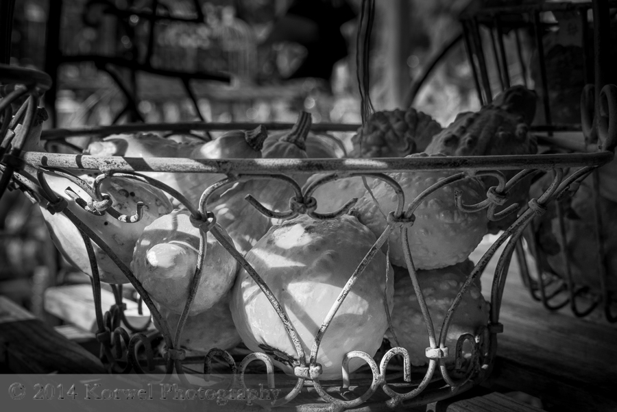Metal basket of pumpkins pumpkins