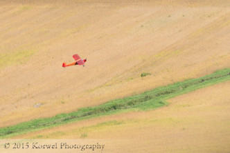 Taylorcraft over corn fields